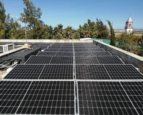 cactus gestión energética Rinconada