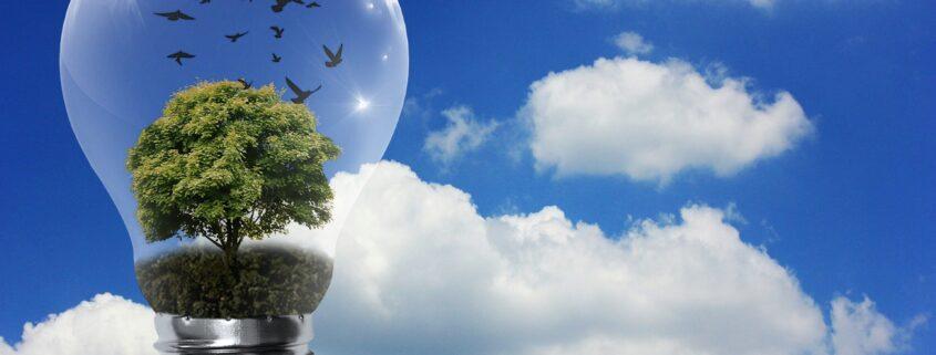 next generation eficiencia energética